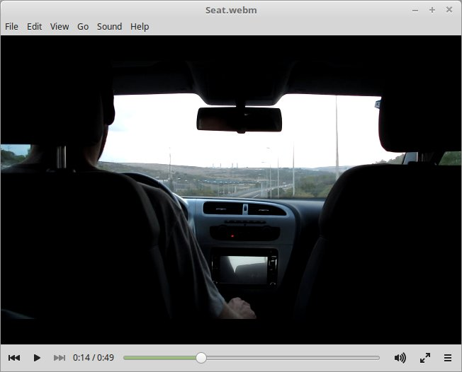 sylvia-hd-video